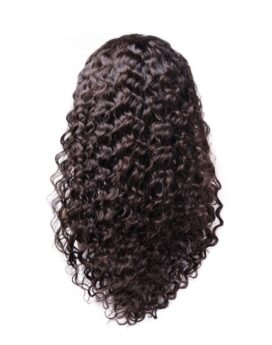 Indian Human Hair Lace Wig