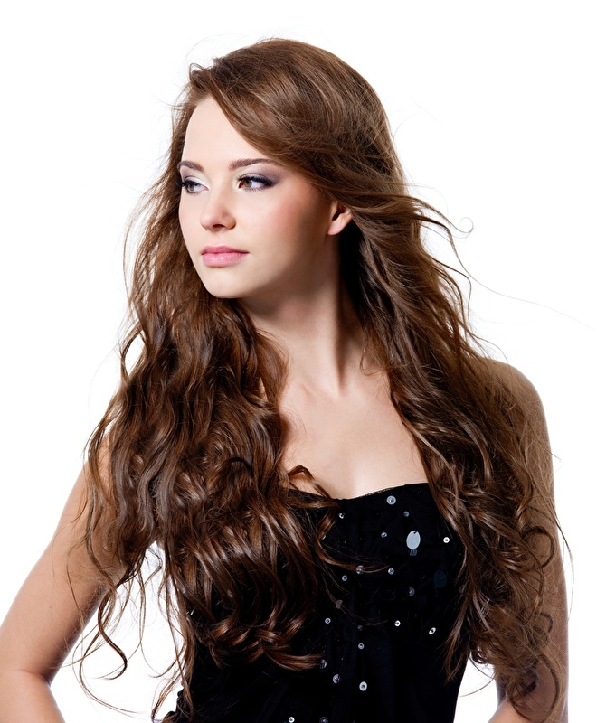 Remy Hair Clip In Extension